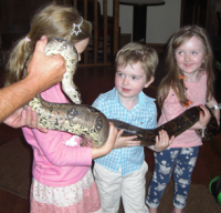 No fear! As Shauna,Luke&Lucy get to grips with a not-so-slimey snake...